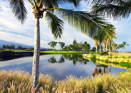 WATER CONSERVATION ON GOLF COURSES